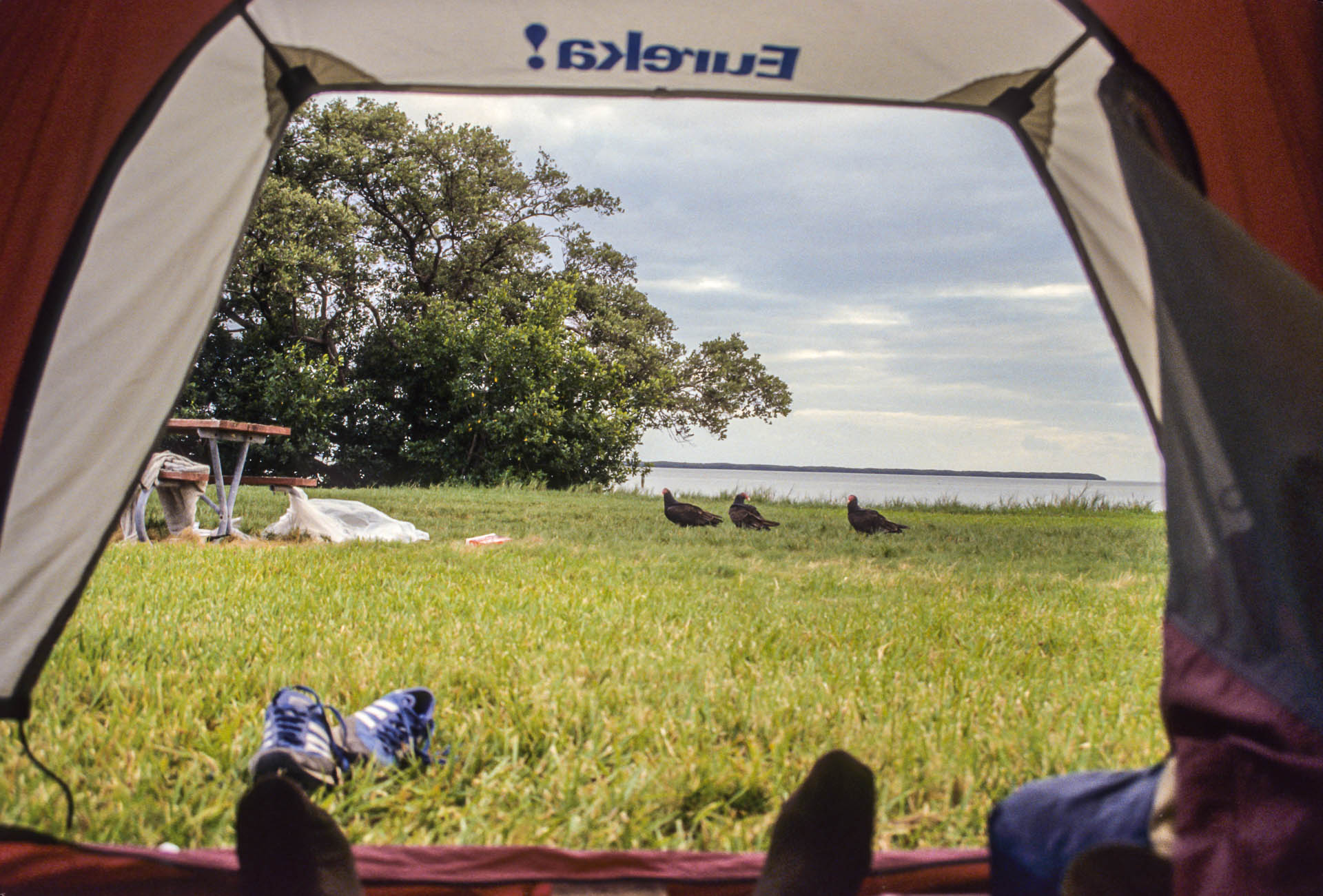 Camping in the Everglades national park